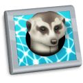 Meerkat 1.5 automatically reconnects your SSH Tunnels