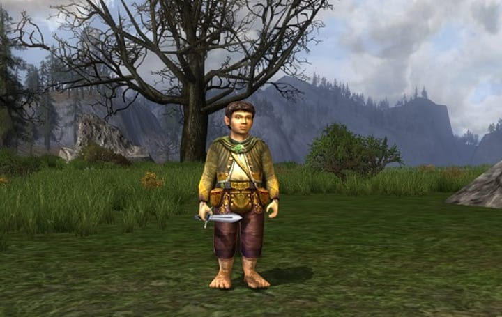 Turbine: Raiders make up the smallest player group in LotRO