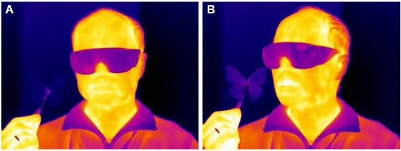 GE turns butterfly-inspired tech into cheap, accurate thermal sensors (video)