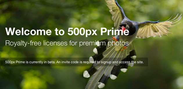500px now lets Prime sellers keep most of the cash from their photos