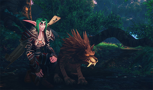 Night Elf Hunter with Wolf