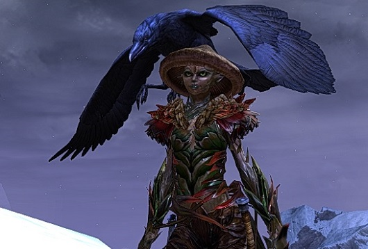 Ranger and bird pet