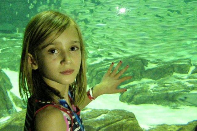 Lola at Seaworld Orlando Florida