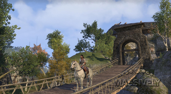 ESO bridge