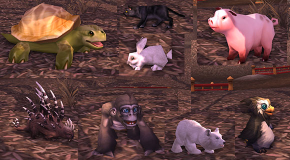 Various animals cast from polymorph spells: turtle, black cat, rabbit, pig, porcupine, monkey, bear cub and penguin.