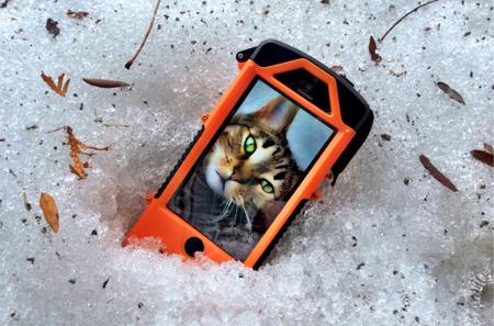 snowlizard case testing