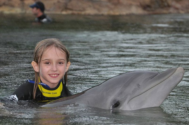 Lola and Capricorn the dolphin in Discovery Cove, Floride