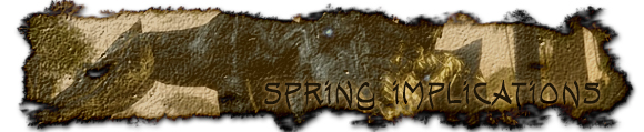Spring implications