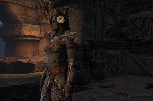 elder scrolls oblivion character creation guide