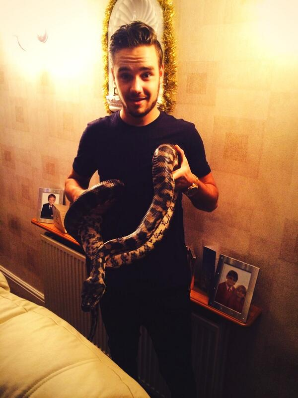 Liam Payne poses with snake pic