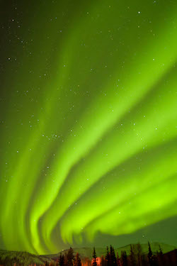 CX59GY USA, Alaska, Fairbanks, Chena Hot Springs Lodge. Aurora borealis or northern lights fill the night sky.