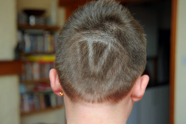 VW hair logo