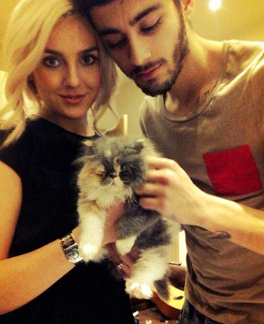 Zayn Malik and Perrie Edwards cat Prada pic Vine video