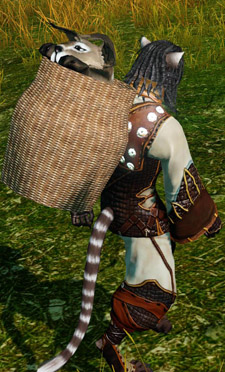 ArcheAge cat backpack