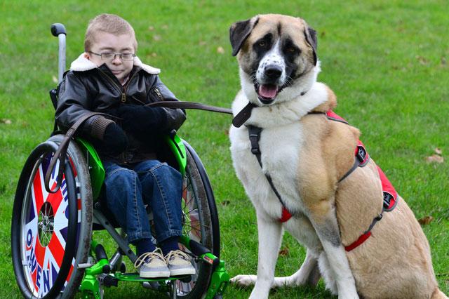 Owen Howkins and his dog Haatchi