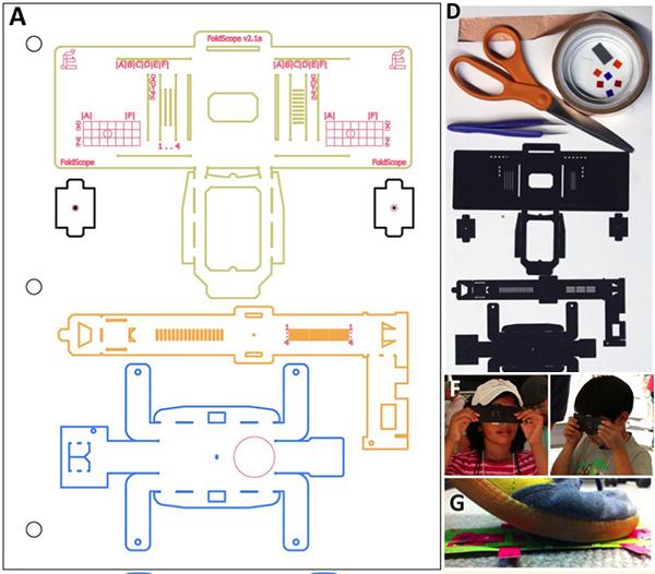 Foldscope: El microscopio de papel recortable que sólo cuesta 1 dólar