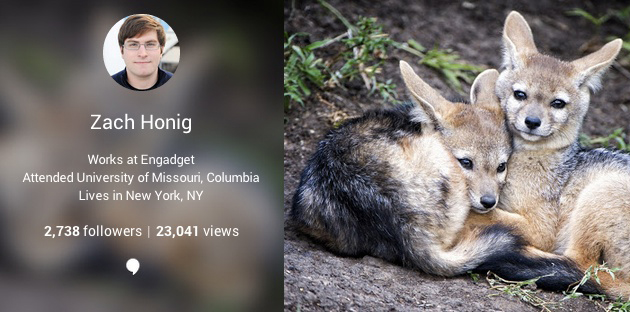 Google+ adds page view counts to user profiles