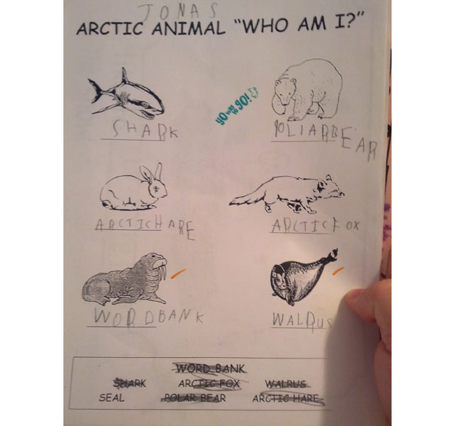 Boy's funny animal quiz answer