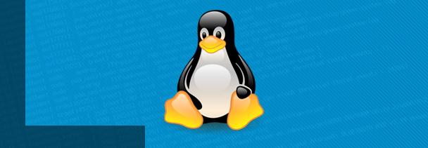 La Fundación Linux impartirá su curso introductorio a través de internet (y sin coste alguno)
