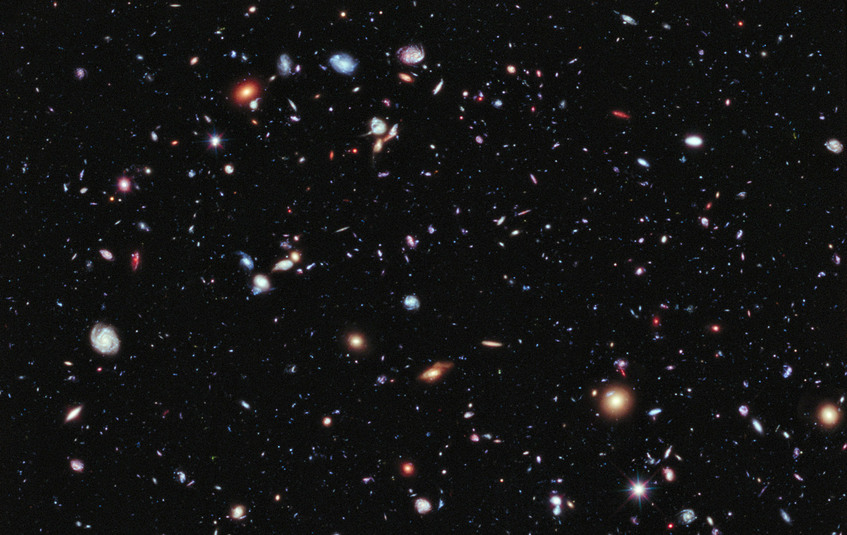 The search for a habitable