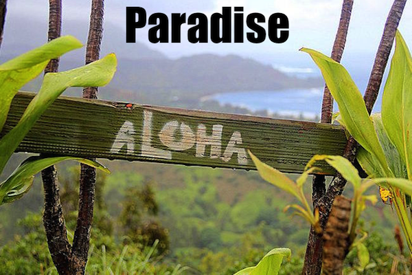 50 words for 50 states, hawaii paradise