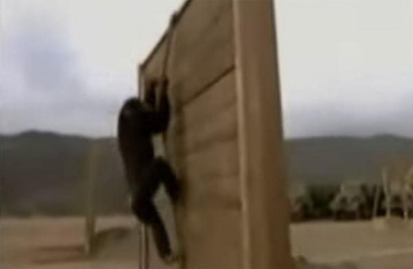 元兵士とチンパンジーがガチで障害物競争をしたらどうなるか?【動画】