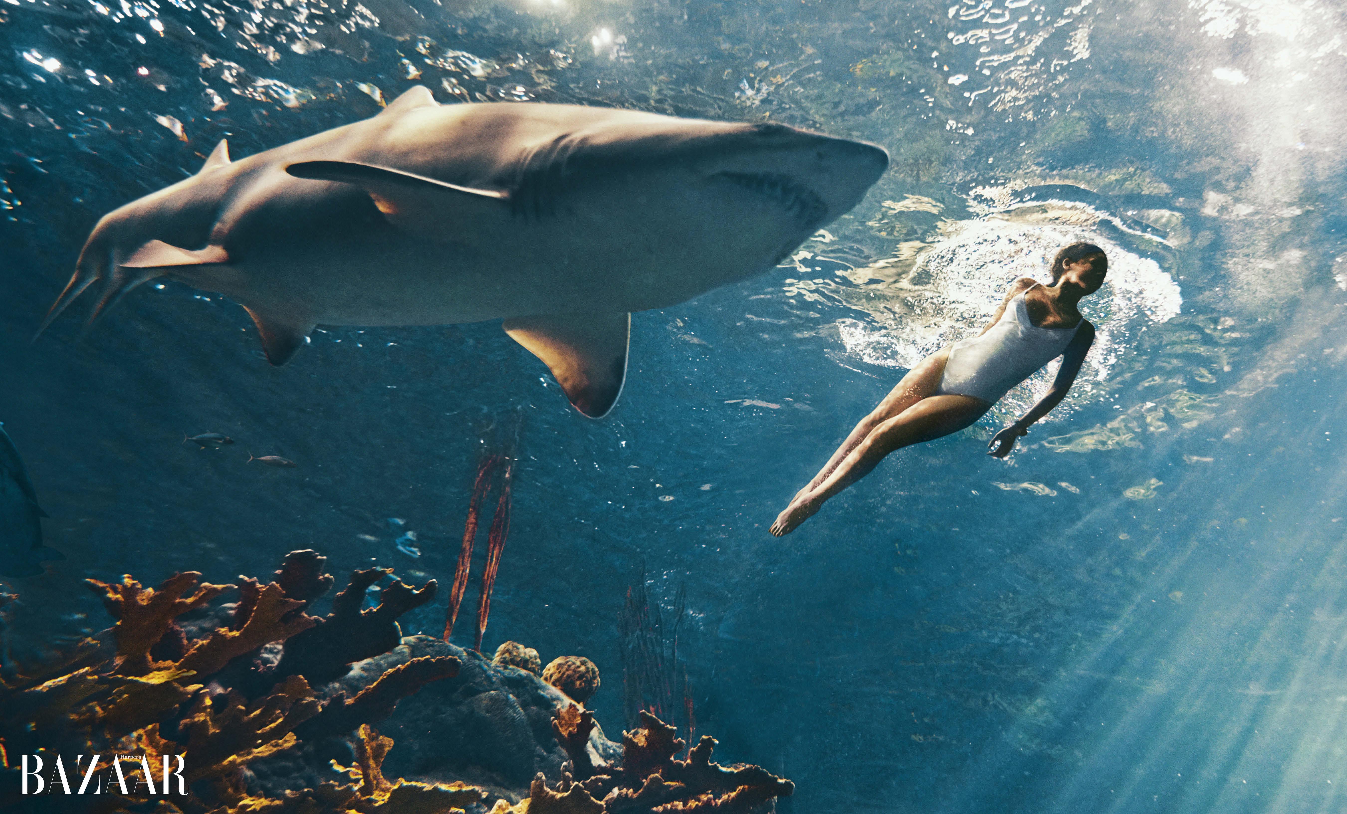 Секс фото с акулой