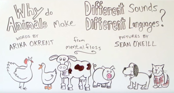 「動物の鳴き声表現」が国によって違う理由をわかりやすく説明してみた【動画】