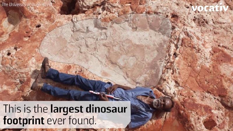 世界最大の恐竜の足跡をオーストラリアで発見!