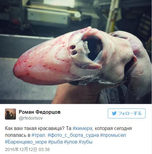ロシアの釣り人が公開した、見た目がコワい深海生物の数々