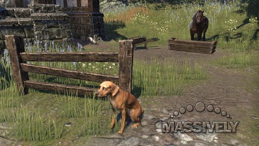 Elder Scrolls Online doggie
