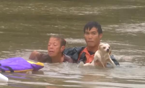 リアルヒーロー! 川に水没した車内から女性と犬を救った男性に称賛の嵐【動画】