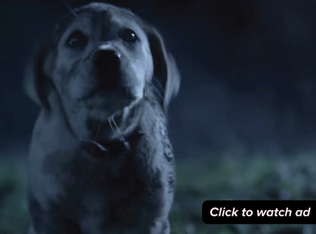 The 10 most-tweeted commercials from Super Bowl XLIX