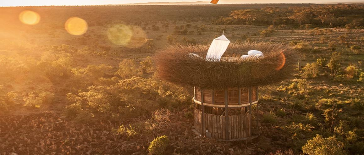 Esta habitación de hotel al aire libre parece un nido gigante de pájaros