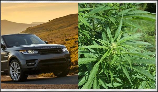 autoknacker, automarder, Diebe, Diebstahl, featured, HID, HID Xenon, HidXenon, Marihuana, Porsche, thief, video, Xenon, Xenon Klau, XenonKlau, Range Rover, Land rover, xenon, cannabis