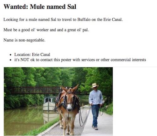 More Hilarious and Bizarre Craigslist Ads - Mandatory