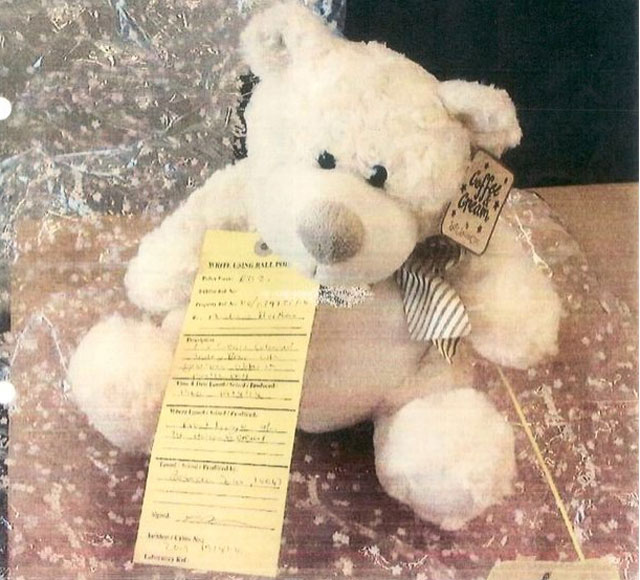 grieving mother teddy grave thief