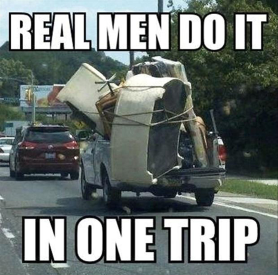 funny moving pics
