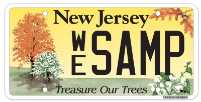State of new jersey environmental license plate