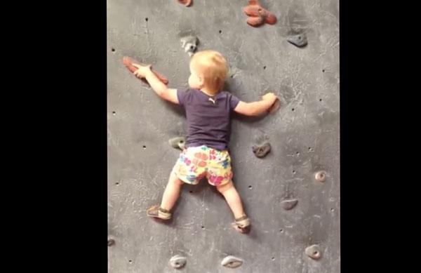 ロッククライミングする1歳半の赤ちゃんがエクストリームすぎてスゴい【動画】