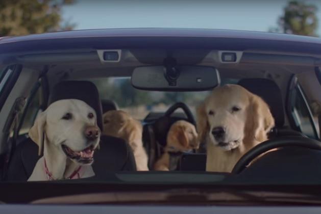 【ビデオ】動物好きのスバル、犬の家族が登場する5本のCMを公開