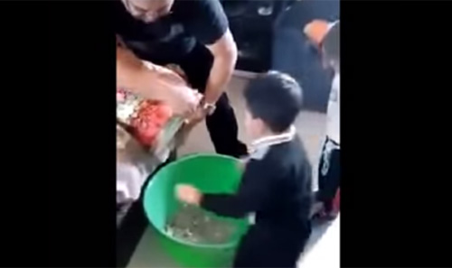 ブタの貯金箱を開封する儀式に大興奮する子供が可愛いすぎ【動画】