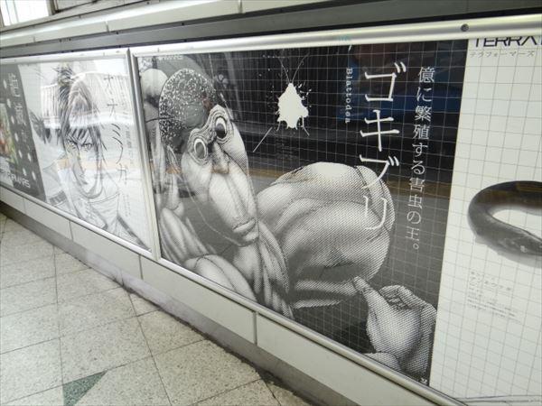 初日から話題!渋谷駅を異常にリアルな昆虫写真がジャック!ゴキブリもいてなにこれ?