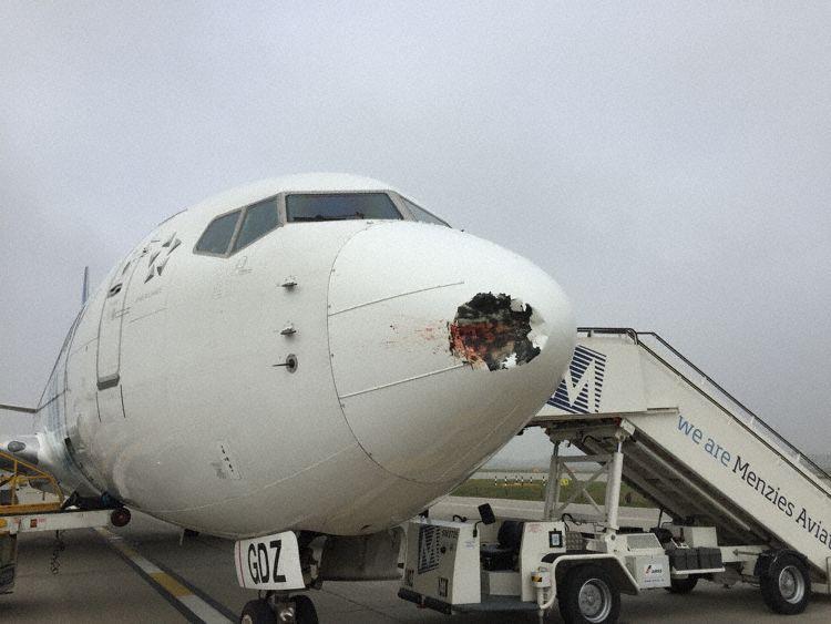 Esto es lo que pasa cuando un pájaro se choca con un avión