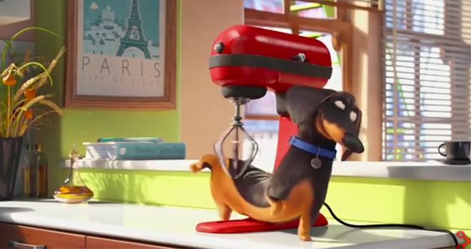 39 the secret life of pets 39 trailer hilariously confirms our suspicions. Black Bedroom Furniture Sets. Home Design Ideas