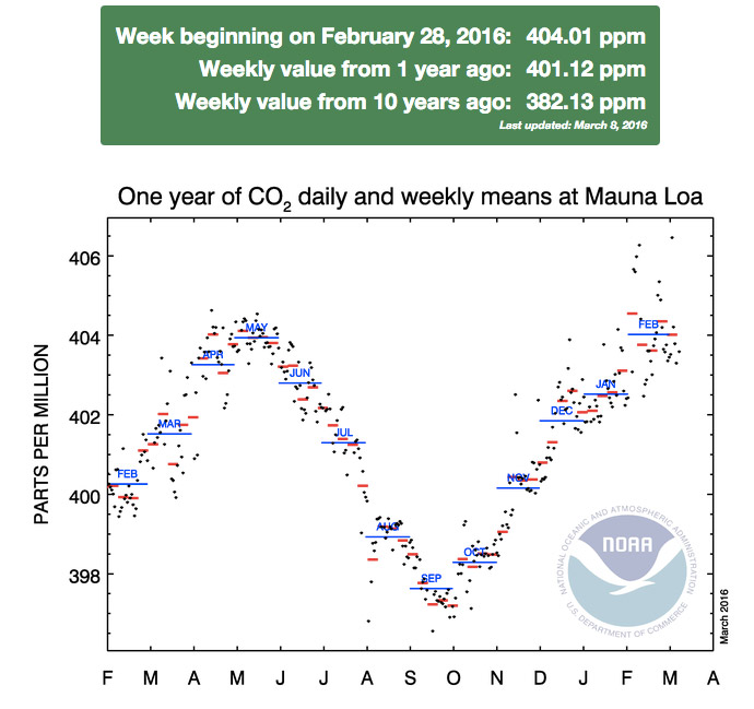 NOAA records the biggest annual increase in CO2 levels