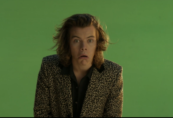 harry styles roadside throw up for sale responds