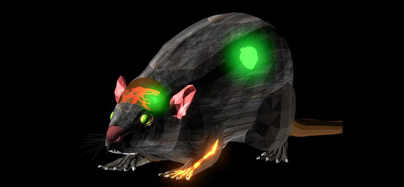 Crean un colorante casi infrarrojo que ayudará a detectar tumores