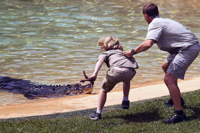 Steve Irwin's 10-year-old son goes face-to-face with huge crocodile