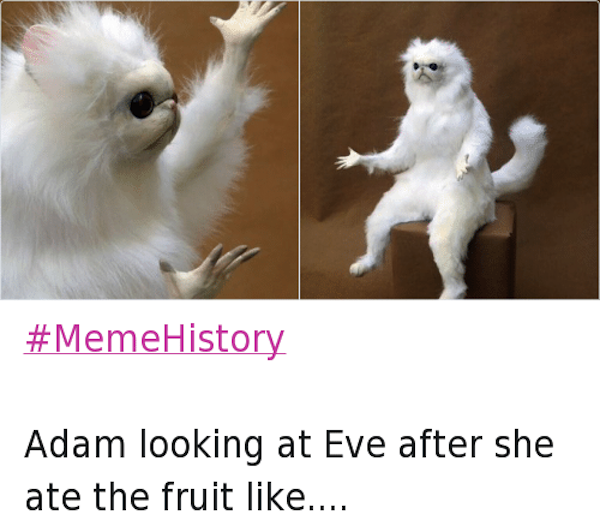 best of memehistory, #memehistory meme, adam and eve memehistory